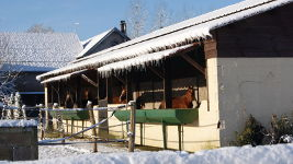 Photo pension chez Haras Mansolein